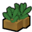 Psychoid leaves.png