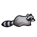 Raccoon.png